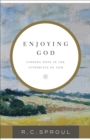 Enjoying God : Finding Hope in the Attributes of God - eBook