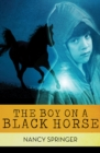 The Boy on a Black Horse - eBook
