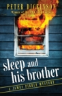 Sleep and His Brother - eBook