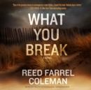 What You Break - eAudiobook