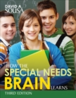 How the Special Needs Brain Learns - eBook