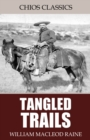 Tangled Trails: A Western Detective Story - eBook