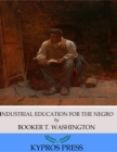Industrial Education for the Negro - eBook
