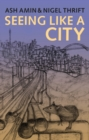 Seeing Like a City - eBook