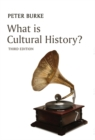 What is Cultural History? - Book