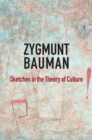 Sketches in the Theory of Culture - eBook