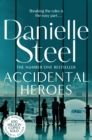 Accidental Heroes - Book