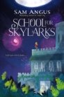 School for Skylarks - Book
