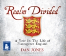 Realm Divided - Book