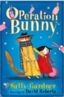 The Fairy Detective Agency: Operation Bunny - Book