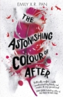The Astonishing Colour of After - Book