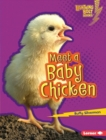 Meet a Baby Chicken - eBook