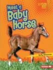 Meet a Baby Horse - eBook