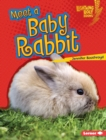 Meet a Baby Rabbit - eBook