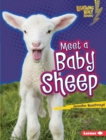 Meet a Baby Sheep - eBook