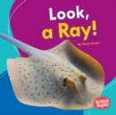 Look, a Ray! - eBook