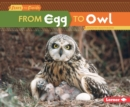 From Egg to Owl - eBook