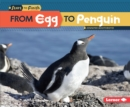 From Egg to Penguin - eBook