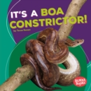 It's a Boa Constrictor! - eBook