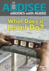 What Does a Level Do? - eBook