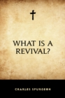 What is a Revival? - eBook