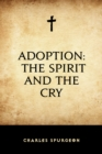Adoption: The Spirit and the Cry - eBook