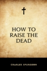 How to Raise the Dead - eBook