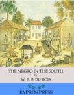 The Negro in the South - eBook