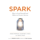 Spark : How to Lead Yourself and Others to Greater Success - eAudiobook