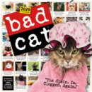 2020 Bad Cat Wall Calendar - Book