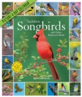 Audubon Songbirds and Other Backyard Birds Picture-A-Day Wall Calendar 2020 - Book