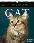 2020 Cat Page-A-Week Gallery Wall Calendar - Book