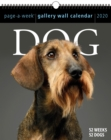 2020 Dog Page-A-Week Gallery Wall Calendar - Book
