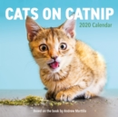 Cats on Catnip Wall Calendar 2020 - Book