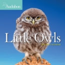 2021 Audubon Little Owls Mini Wall Calendar - Book