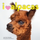 2021 I * Alpacas Mini Wall Calendar - Book