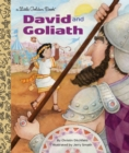 David And Goliath - Book