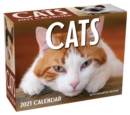 Cats 2021 Mini Day-to-Day Calendar - Book
