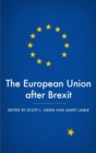 The European Union After Brexit - Book