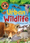 Nature Detective: Urban Wildlife - Book