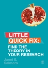 Find the Theory in Your Research : Little Quick Fix - eBook