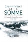 Eyewitnesses at the Somme : A Muddy and Bloody Campaign 1916-1918 - eBook