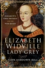 Elizabeth Widville, Lady Grey : Edward IV's Chief Mistress and the 'Pink Queen' - eBook