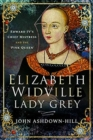 Elizabeth Widville, Lady Grey : Edward IV's Chief Mistress and the 'Pink Queen' - Book