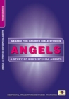Angels : A Study of God's Special Agents - Book