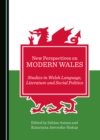 None New Perspectives on Modern Wales : Studies in Welsh Language, Literature and Social Politics - eBook