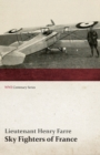 Sky Fighters of France (WWI Centenary Series) - eBook