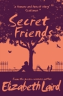 Secret Friends - Book