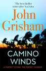 Camino Winds : The best thriller you will read this summer - Book