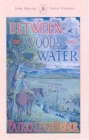 Between the Woods and the Water : On Foot to Constantinople from the Hook of Holland: The Middle Danube to the Iron Gates - Book